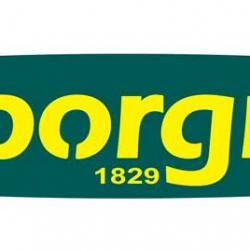 Img 0038